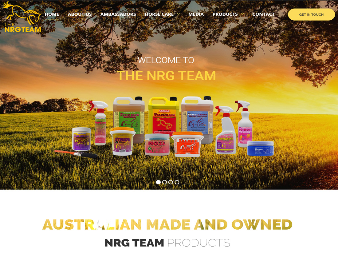 The NRG Team Website Project